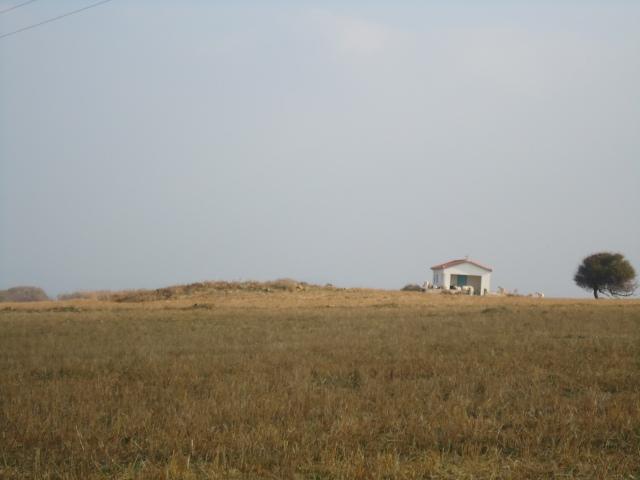 λιμνοσ 2011 007
