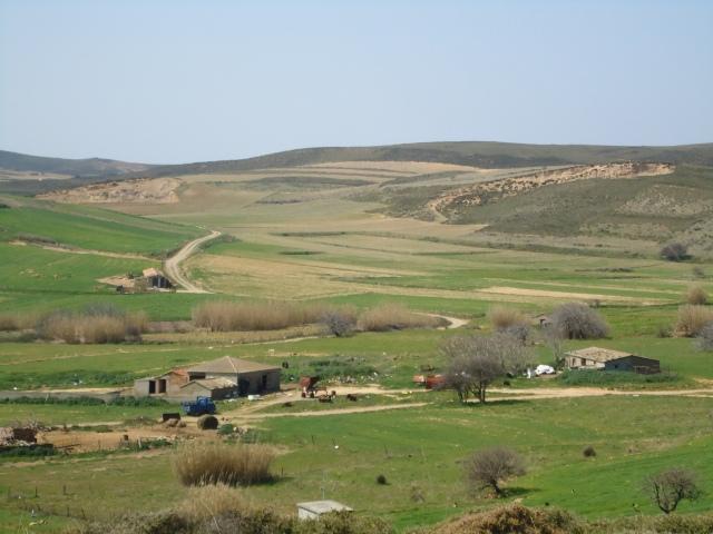 limnos Martios 2011 118
